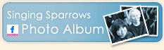 Singing Sparrows Photo Album